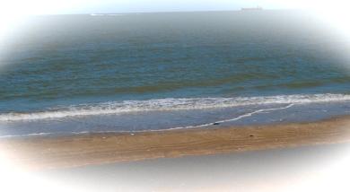 Water Edge