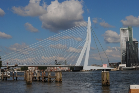 Erasmus bridge by Ben van Berkel
